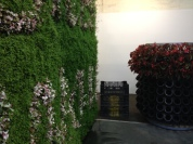 More living walls.
