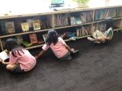 Enjoying full graphic novel shelves, quite rare!