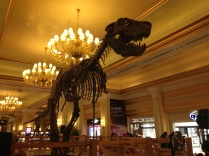T-Rex- Dinosaurs live.