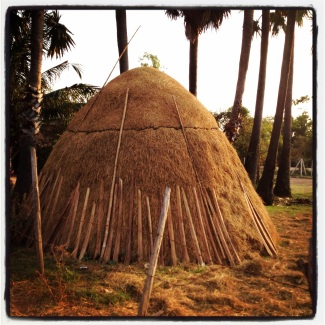 Isn't this a fascinating haystack?