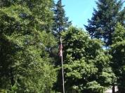 Hello American flag...