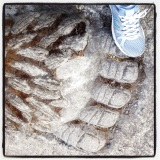 Time to step on Bigfoot's big toe!