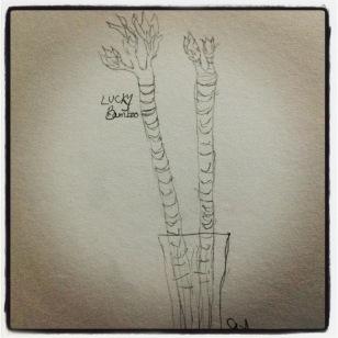 #Inktober continues, bamboo