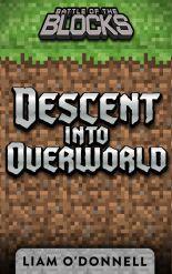 Descent-into-Overworld-cover-LiamODonnell