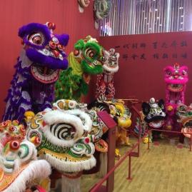 History of dragons display