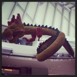 Celebrating creatures, dragon time!