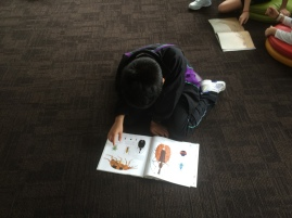 Enjoying The Beetle Book