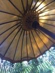 I love looking up into umbrelas
