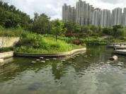 Peaceful walking area