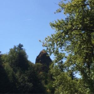 Hi Rooster Rock!
